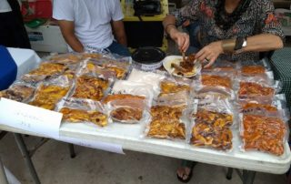 Mango Festival – Saturday, July 1st – Parque Lazaro Cardenas – 4:00 pm to 9:00 pm